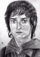 Frodo by tanjadrawing