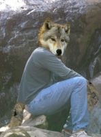 Wolf me by sonofawerewolf