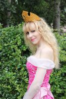 Sleeping Beauty Cosplay by LadyliliCosplay
