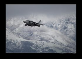 Stormy Harrier Departure by jdmimages