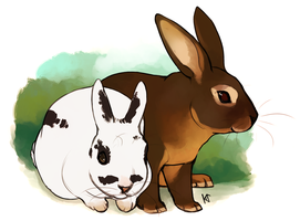 Buns by Susiron