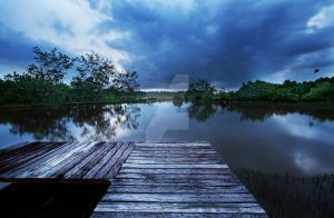 Garama Wetlands Borneo by stonehagdesign