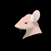 Brown Mouse by Wuvu777