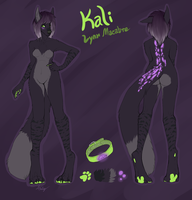 Dessy-Doll Character Sheet Commission by gr-ay