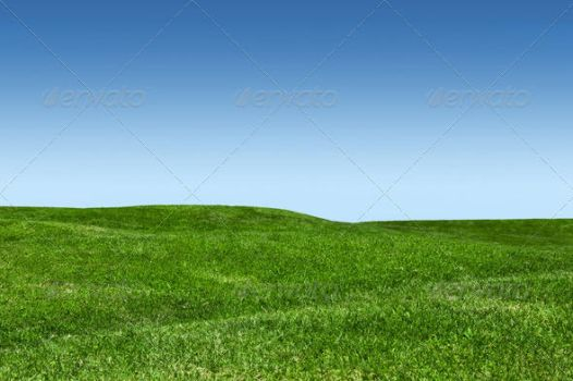 Green Lawn And Blue Sky by nadaimages