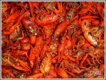 mudbugs by CapnSkusting