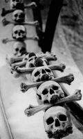 Ossuary by caltha