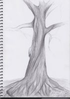 Tree Drawing by 777ultimate