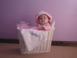babe in a basket by stockmichelle
