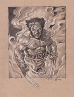 Wolverine Sketch by NathanRosario