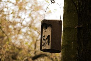 Birdhouse 31 by Zoozette-Abdoh