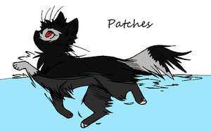 Patches by SekitaLuna