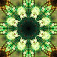 Mandala of the organic light by Suvetar