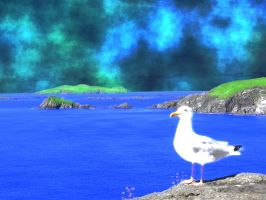 Seagull_Scenery by D3L1GHT