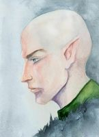 DAI Solas by Owlet-in-chest