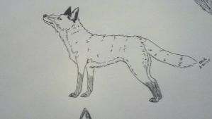 Traditional Sox the Fox by Alcemistnv