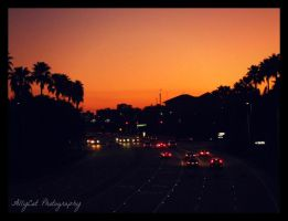 Sunset Over Florida by AllyCat1994