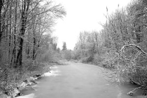 View on the frozen river 1- BW by steppeland