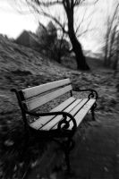 Lonely bench by austar