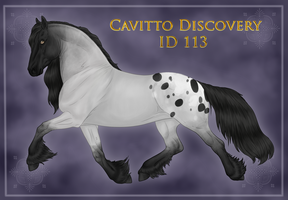 Cavitto Discovery ID 113 by BrindleTail
