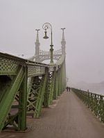 Liberty Bridge by rembo78
