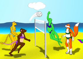 Pregfur Beach Volleyball by kirbygod