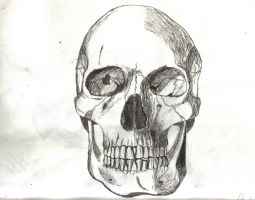 Skull India Ink I by Null-Hypotheses