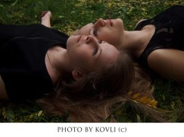 Picnic on the Grass 8 by KovLi