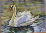 Swan of Serenity (joke In french...) 2007 by Reybert
