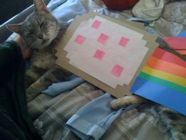 nyan cat costume by kieyoukie