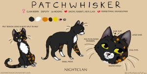 Character Sheet- Patchwhisker by Meepersthecat