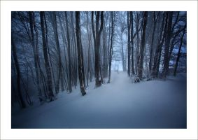 Winter Wonderland - Part. 7 by Androgynous23