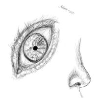 Eye and Nose by xXNightRose14Xx