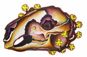 Wallaby Skull with Flowers by Skullsie