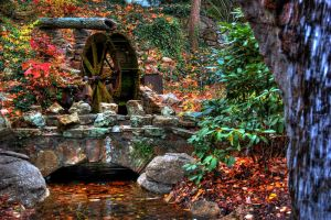 Water Wheel by littlerobin87