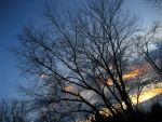.:Winter Sunset:. by DeppObession10