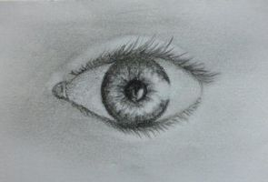 Attempt of a realistic eye by w0lfix