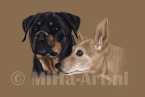 Portrait 2 dogs by winaty