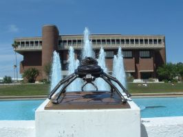 Spider in the fountain by metalbymorgan
