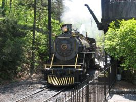 Dollywood Express by uncledave