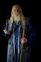 2014-08-01 Wizard Blue 04 by skydancer-stock