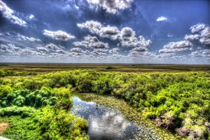 Everglades HDR by CyclicalCore