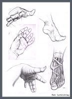Hands and feet study by amadarien