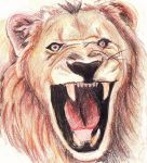 Lion by Threonine