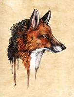 Vulpes by Lycanium