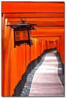 Fushimi Inari-taisha 5 by dragonslayero