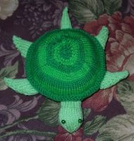 Knit Turtle by substitutiary