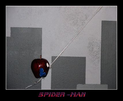 Spider-Man by Confused4