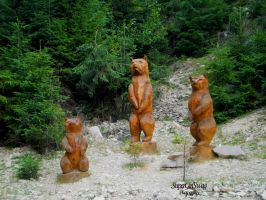 Wooden Bears by SuperGirlSwag
