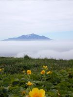 ON191--Above the Fog by Eliasome